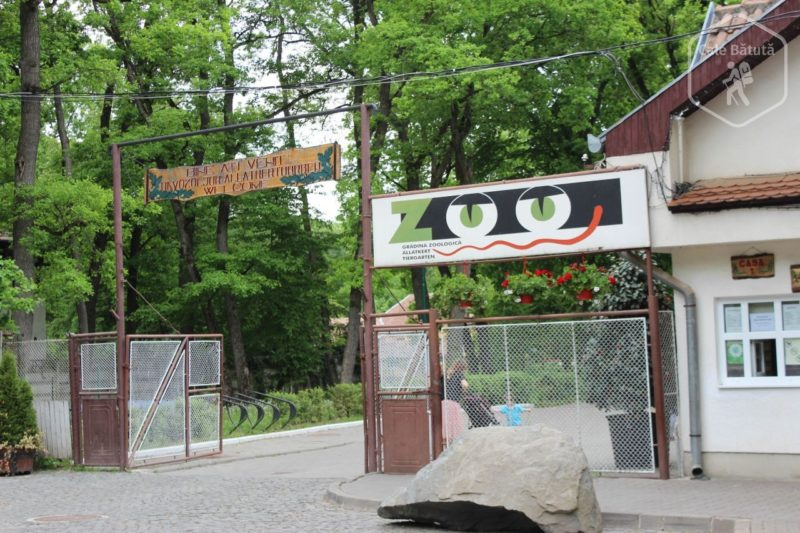 zoo mures